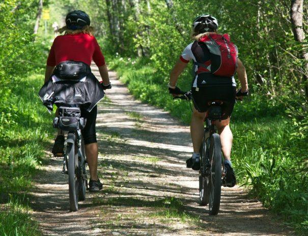 aktywny wypoczynek rower